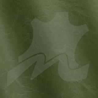 Green 2003